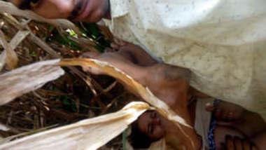 Village couple fucking hard in jungle part 2