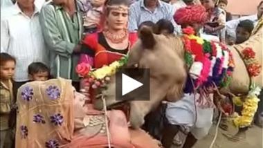 Ajab Desh Ki Gajab Tamasha – Camel sucking boobs