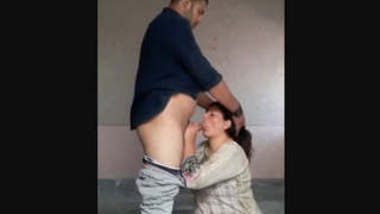desi middle age couple hot dick sucking